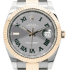 Rolex Oyster Perpetual Datejust 41 Bi-metal 126333