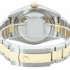 Rolex Oyster Perpetual Sky-Dweller Bi-metal 326933